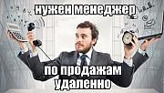 Требуется МЕНЕДЖЕР по ПРОДАЖАМ. ЛНР. Работа дистанционно Красный Луч