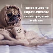 Сайты, SEO, контекстная реклама, Вконтакте, Инстаграм, Фейсбук. Донецк ДНР