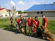 Аджилити (спортивная дрессировка) в Донецке Донецк ДНР