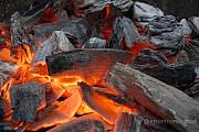 Древесный уголь от производителя Донецк ДНР
