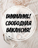 Оператор чата / переводчик Луганск ЛНР